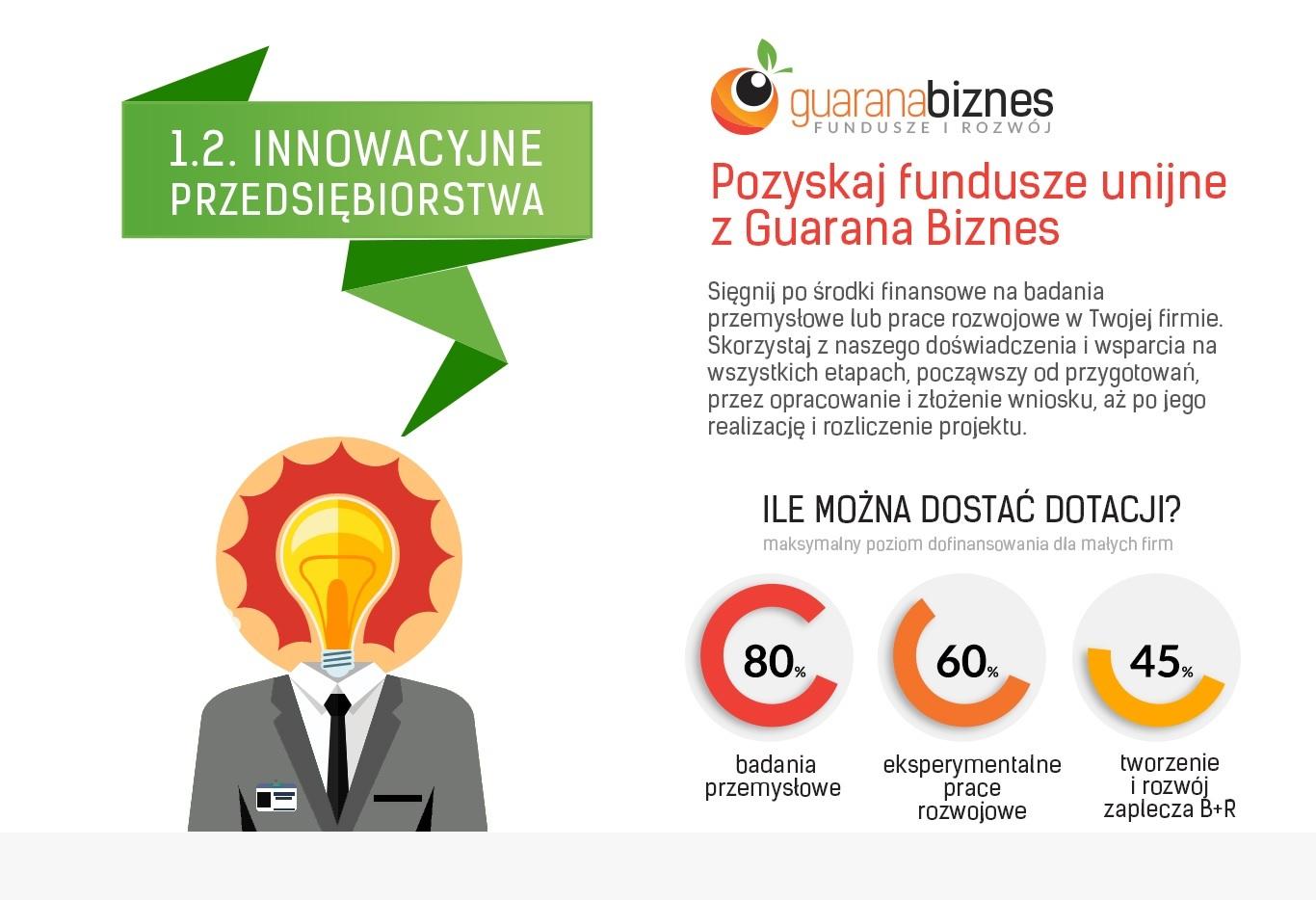 infografika_guaranabiznes